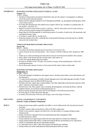 Download Business Support Specialist Resume Sample As Image File