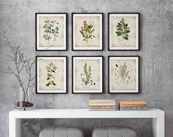 Herbs Print Kitchen Wall Art Botanical Poster Herb And Spices