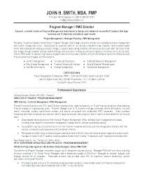 Entry Level Resume Summary Examples Project Manager For Resumes