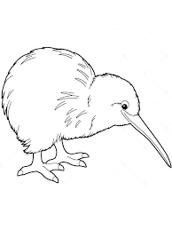 Kiwi Birds Coloring Pages 2