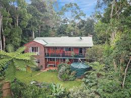 100 Tree Houses Maleny 34 Palm Street QLD 4552 House For Sale Domain