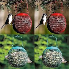 Globe Bird Feeder Globe Bird Feeders For Small Songbirds Globe