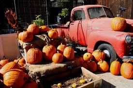 Peter Pumpkin Patch Petaluma by Pumpkin Time U2013 Farminista U0027s Feast