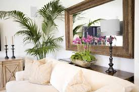 1 Turn Of The Century Havana Mirror And Tropical Foliage