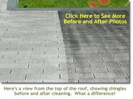 roof cleaning and exterior cleaning by pro exterior cleaning