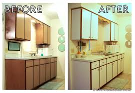 Lovable Apartment Kitchen Decorating Ideas On A Budget With Apartments Stunning About Rental