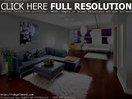 Country Living Room Ideas For Small Spaces by Enchanting Apartment Living Room Decor Designs U2013 Living Small And
