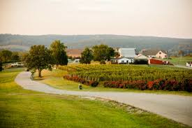 Pumpkin Farm Maryland Heights Mo by 10 Beautiful Wineries Near St Louis You Must Visit