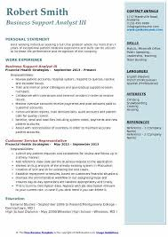 Business Support Analyst III Resume Model