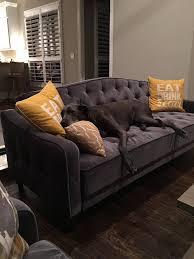 Ava Velvet Tufted Sleeper Sofa Canada by Furniture Velvet Sleeper Sofa Ava Velvet Tufted Sleeper Sofa