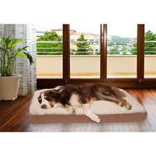 Petco Dog Beds by Petco Dog Beds Ebay