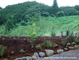 si鑒e social kiabi herb science archive 植物性有機農法によるハーブ栽培