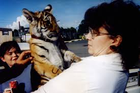 Should Tony The Truck Stop Tiger Go Free?
