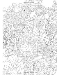 Amazon Adult Coloring Book Cats Birds Flowers And Butterflies Stress Relieving
