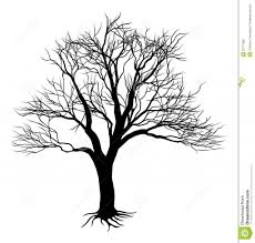 Bare Tree Silhouette With Roots