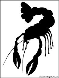 Pinterest Crawfish Boil Decorations by 29 Best Crawfish Images On Pinterest Silhouette Cameo