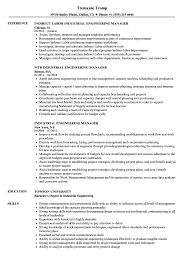 Download Industrial Engineering Manager Resume Sample As Image File