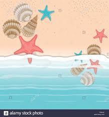 100 Sea Shell Design Sea Shell And Star In The Sand Design Stock Vector Art