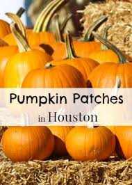 Pumpkin Patch Pasadena Area by Houston Pumpkin Patches Fall Festivals In Houston Texas 2017