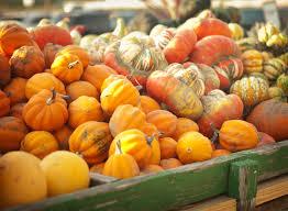 Chesterfield Berry Farm Pumpkin Patch 2015 by Year Round Fun At Eckert U0027s Belleville Farm U2014 Eckert U0027s Family Farms