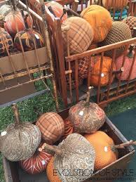 Sycamore Pumpkin Run 2013 Results by 2017 Country Living Fair Free Tickets Evolution Of Style