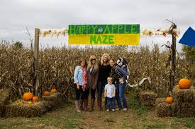 Pumpkin Patch Columbus 2015 by P Y O Pumpkins Apples Paw Paws U0026 Recipes Think About Eat
