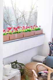 die schönsten pflanzkübel für innen und außen