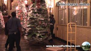Saran Wrap Xmas Tree by 2014 12 04 Wrapping And Moving Christmas Trees At The Embassy