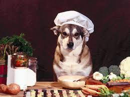 cuisiner pour chien alimentation naturelle pour votre chien une alternative qui gagne