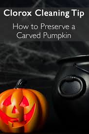 Preserve Carved Pumpkin Forever by 109 Best Cleaning Tips And Tricks Images On Pinterest Cleaning
