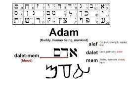 The Original Hebrew Written Text Was A Picture Language Each Letter Has Meaning Below Is Word For Adam