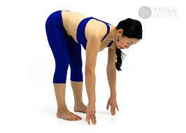 Half Forward Fold Pose O Yoga Basics
