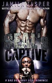 SEALs Captive BWWM Bad Boy Romance The Series Book 1 By