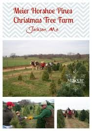 Meier Horse Shoe Pines Christmas Tree Farm Is The Official Supplier For Missouri