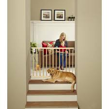 Pet Stairs For Tall Beds by Shop Child Safety Gates At Lowes Com