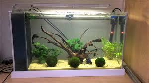 aquarium 20 litres