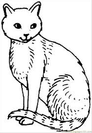 Cat 21 Coloring Page
