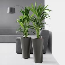The Big List Of Self Watering Planters For Stylish Gardening Anywhere