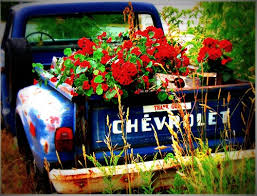 Blue Rusted Chevy Truck Red Geraniums God