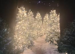 6ft Pre Lit Christmas Tree Tesco by Tesco Christmas Tree Fairy Lights Part 22 Shemazing Home