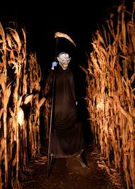 Lathrop Pumpkin Patch Maze by Terror In The Corn Colorado Haunted Houses Halloween 2015 Haunted