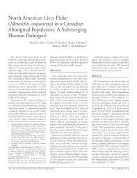 PDF North American Liver Fluke Metorchis