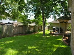 Shade Trees In The Backyard - Shade Trees For The Backyards ... Garden Design With Backyard Landscaping Trees Backyard Fruit Trees In New Orleans Summer Green Thumb Images With Pnic Park Area Woods Table Stock Photo 32 Brilliant Tree Ideas Landscaping Waterfall Pond Stock Photo For The Ipirations Shejunks Backyards Terrific 31 Good Evergreen Splendid Grass Scenic Touch Forest Monochrome Sumrtime Decorating Bird Bath Fountain And Lattice Large And Beautiful Photos To Select Best For