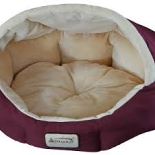 Armarkat Cat Bed by Classic Accessories Folding Travel Dog Bed Destinations Travel Gear
