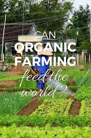 Best 25+ Organic Farming Ideas On Pinterest | Organic Gardening ... Best 25 Urban Farming Ideas On Pinterest What Is Organic Farming In The Philippines Reality Tv Episode 17 Fishy The Backyard Homestead Produce All Food You Need Just A Gardening Aquaponics Tips Youtube Cheap Methods Find Deals Easy Home Office Backyards Cozy In Eco Pics On 665 Best Gardening Images Benefits 171 Garden Pests Pests