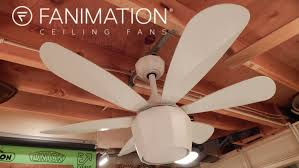 Canarm Ceiling Fan Instructions by Fanimation Crease Ceiling Fan Youtube