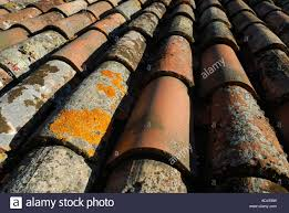 lichen encrusted mission clay roof tiles in umbria italy stock