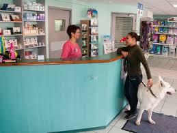cabinet roch gap clinique vétérinaire st roch vétérinaire gap accueil vétérinaire
