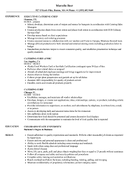 Catering Chef Resume Samples | Velvet Jobs Resume Sales Manager Resume Objective Bill Of Exchange Template And 9 Character References Restaurant Guide Catering Assistant 12 Samples Pdf Attractive But Simple Tricks Cater Templates Visualcv Impressive Examples Best Your Catering Manager Must Be Impressive To Make Ideas Sample Writing 20 Tips For
