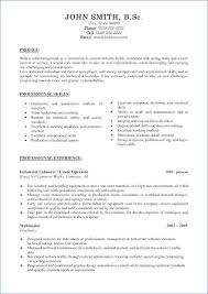 Professional Profile Resume Examples Teacher For Related Post